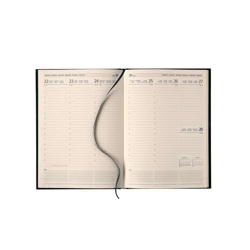 Agenda journalier Business 29 7J/2P 175 x 225 mm noir